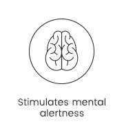 Stimulates mental alertness