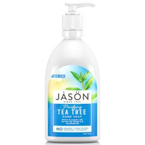 JASON 杰森茶树液体皂 (480ml)