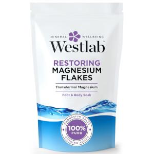 Westlab 纯镁片