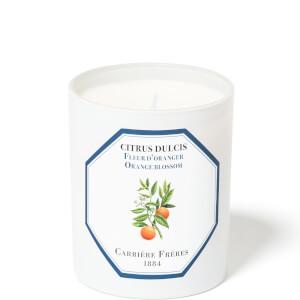 Carrière Frères Scented Candle Orange Blossom - Citrus Dulcis - 185 g